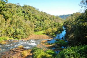 Eco Parque Jacaré Território Selvagem Canoar